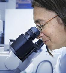 Services de laboratoire pour l'identification de l'amiante et des champignons au microscope.