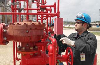 الحماية من الحرائق، وخدمات الاختبار والصيانة. الخدمات الهندسية والتصميم والتركيب لأنظمة الحماية من الحرائق.
